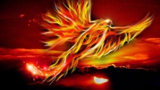 Infini T Force /インフィニティフォース 第11話 INDEPENDENT FLOWER 出た~科学忍法〇〇