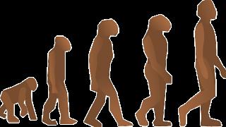 重神機パンドーラ 第1話「進化する破壊者」レビュー(ネタバレ)<何もかも超越してるわ>