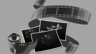 【海外ドラマ】パニッシャー【NETFLIX】シーズン2第6話「狩人」見所(ネタバレ)【MARVEL】