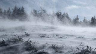 【海外ドラマ】ウォーキング・デッド シーズン9第16話「嵐の予感」レビュー(ネタバレ)